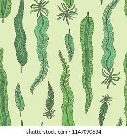 Seamless pattern with laminaria: laminaria seaweed, sea kale. Brown algae. Edible seaweed. Vector hand drawn illustration.