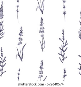Seamless pattern of lavender flowers on a white background. Pattern with Lavender for packing. Stock vector.