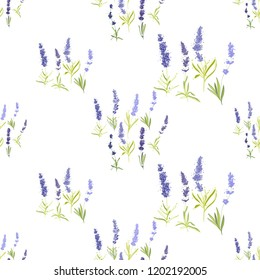 Seamless pattern with lavender greenery and herbs. Vector watercolor vintage sketch. Botanical colorful illustration on white background.