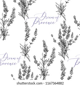 Seamless pattern with lavender sketch and dream of Provence lettering. Vintage botanical illustration on white background. Black vector ink.