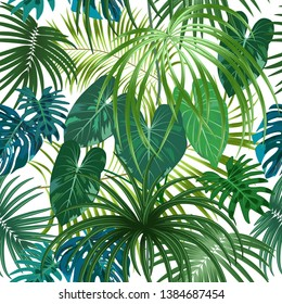 Seamless pattern of leaves monstera. Tropical leaves of palm tree. Vector background.