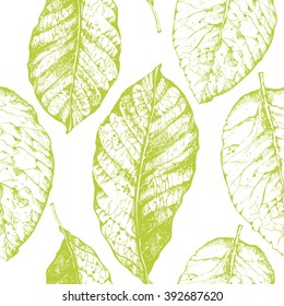 Seamless pattern with leaves on white background. Floral vector illustration with tobacco.