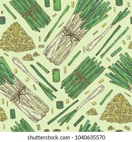 Seamless pattern with lemongrass: bunch, plant and dry lemongrass. Vector hand drawn illustration.