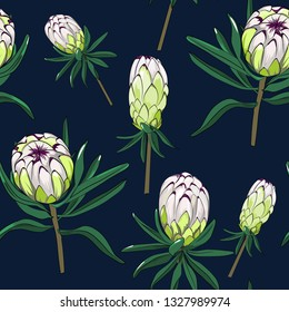seamless pattern of lime light protea, australian native plant on dark navy background