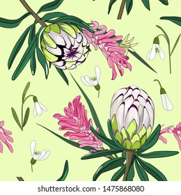 seamless pattern of lime light protea mixed with small snow drop white flower, australian native plant on light green background