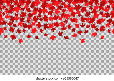 Seamless pattern with maple leafs for 1st of July celebration on transparent background. Vector Illustration. Independence Day of Canada.  Red maple leafs.