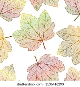 Seamless pattern with  maple leaves. Vector illustration.