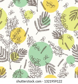 Seamless pattern with mimosa: mimosa flowering branch and leaves. Acacia dealbata. Cosmetic, perfumery and medical plant. Vector hand drawn illustration