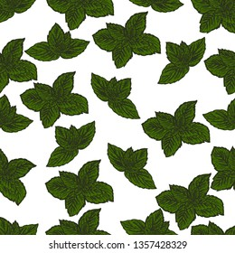 Seamless pattern of mint leaves on white background.