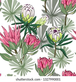 seamless pattern of mixed king protea and lime light protea,australia