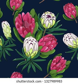 seamless pattern of mixed red ice and lime light protea,australia native plant