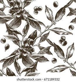 Seamless pattern with monochrome hand drawn coffee tree branches