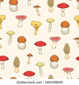 Seamless Pattern with Mushrooms. Honey Agaric, Chanterelle, Russula, Death Cup, Fly Agaric, Morel, Boletus on Beige Background