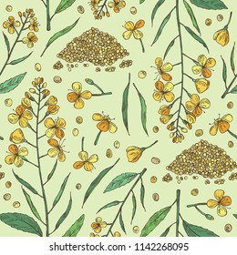Seamless pattern with mustard: plant, mustard seeds, flower, leaves and pod. Dijon mustard. Vector hand drawn illustration.