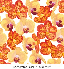 Seamless pattern of orange and yellow orchid flower on white background. Vector set of exotic tropical garden for holiday invitations, wedding, greeting card and fashion design.