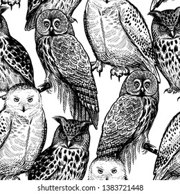 Seamless pattern with owls. Realistic birds. Vector illustration. Predatory forest birds. Sketch hand drawing. Black and white. Vintage. Template for the design of textiles, paper, wallpaper.
