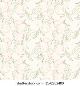 Seamless pattern of peaches or apricots on white background. Ripe sweat fruits can be used for wallpaper, textile, wrapping paper or website
