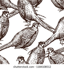 Seamless pattern with pheasants. Antique engraving illustration with birds.