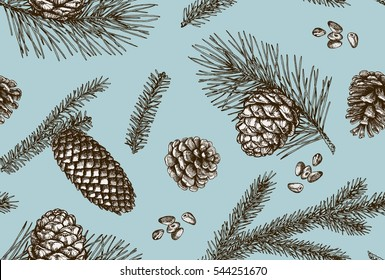 Seamless pattern with pine cones. Vector illustration.