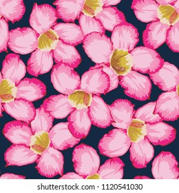 Seamless pattern pink Adenium flowers on dark blue color background.Drawing watercolor style.Vector illustration.