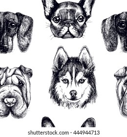 Seamless pattern with purebred dogs. Vector texture with portraits pets. Hand drawn vector surface wallpaper with sharpei, french bulldog, husky and dachshund.