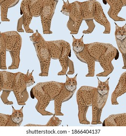 Seamless pattern with realistic Eurasian lynx with different poses. Eurasian lynx or Lynx lynx. Big wild cats. Animals of Europe, Asia and America. Vector illustration