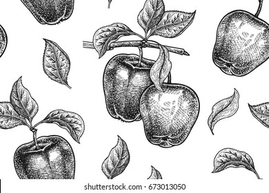 Seamless pattern. Realistic fruit, branch and apple tree leaf. Black and white vegetarian food. Vector illustration art. Vintage engraving. Hand drawing. Template with nature motifs for kitchen design