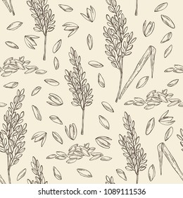 Seamless pattern with rice and plant with rice. Vector hand drawn illustration.