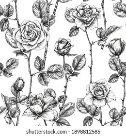 Seamless pattern with roses flowers. Colored vector illustration. In black and white graphic