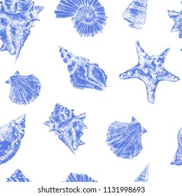 Seamless pattern with sea shells.Vector tropical sea shells. Seashell set isolated.Hand drawn illustrations of engraved line.Collection of sketches various mollusk sea shells different forms.