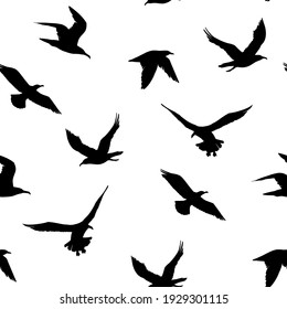 Seamless pattern. seagulls outlines. Hand drawn illustration converted to vector.