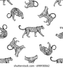 Seamless pattern of sketch style leopards. Vector illustration isolated on white background.