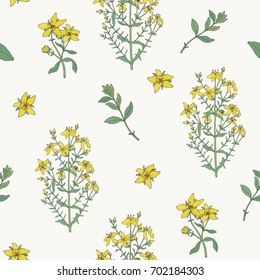 Seamless pattern with St. John's wort medical botanical blossom plant. hand drawn vector colorful  texture.