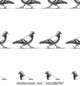 Seamless pattern of striding pigeons