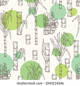 Seamless pattern with sugarcane: cane sugar and sugarcane. Vector hand drawn illustration.