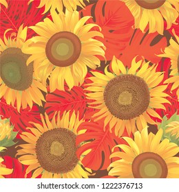 Seamless pattern of sunflowers with red leaf on brown background. Vector set of blooming floral for holiday invitations, greeting card and fashion design.