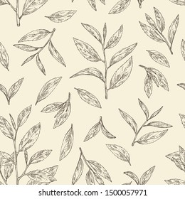 Seamless pattern with tea: branch and tea leaves. Green tea. Vector hand drawn illustration.