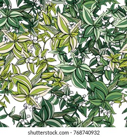 Seamless pattern with traditional homeplant Tradescantia. Endless texture with flower used indoor.