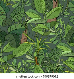 Seamless pattern with tropic plants. Dark green color, exotic flowers used indoor