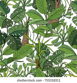 Seamless pattern with tropic plants. Green color, exotic flowers used indoor