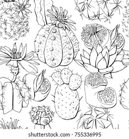 Seamless pattern with tropic succulent plants and cactus. Black and white contour monochrome.