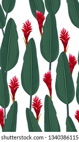 Seamless pattern tropical leaves with red ginger on white background