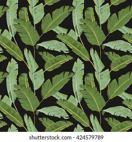 Seamless Pattern. Tropical Palm Leaves Background. Banana. Vector. Exotic Texture. Floral Wallpaper.