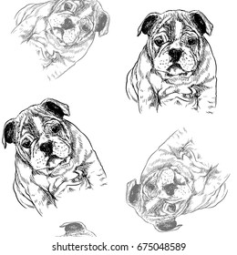 seamless pattern with vector sketch of a dog. Vector Illustration.