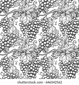 Seamless pattern with vine. Hand drawn vector illustration of grapes. Retro style.