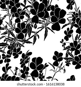Seamless pattern with viola tricolor. Black illustration on white background.  Summer graphic. Meadow foliage. Herbal nature plant.