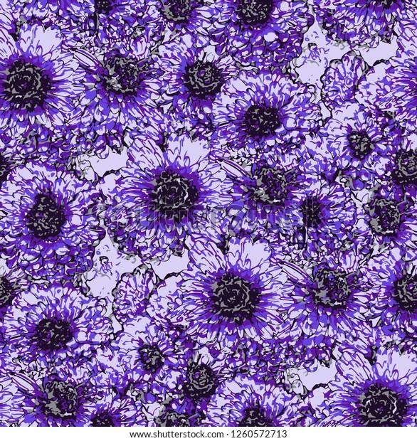 Seamless pattern with violet chrysanthemum flowers