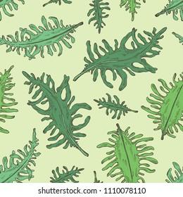 Seamless pattern with wakame: undaria pinnate seaweed, wakame leaves. Brown algae. Edible seaweed. Vector hand drawn illustration.