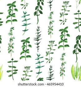 Seamless pattern with watercolor collection of herbs de Provence. Rosemary, basil, thyme, sage, peppermint, summer savory, marjoram, oregano. Vertical layout. Usable for textile, paper, wrapping