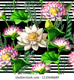 Seamless pattern  with waterlily hand draw .
